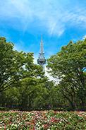 久屋大通公園から見た名古屋テレビ塔