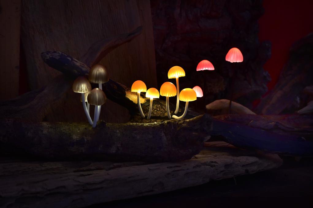 幻想的に発光するキノコランプたち。