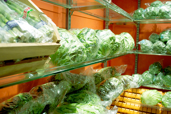 中はひんやり! 3℃前後に保たれた室内には、葉物の野菜たちがいっぱいです。