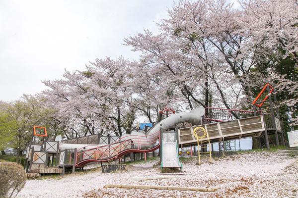 公園にあるような遊具よりもさらに大きなアスレチック施設は、大人もチャレンジしたくなります。