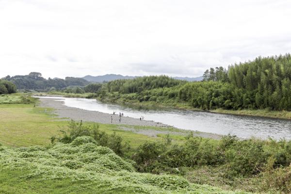 こちらが道の駅の横を流れる久慈川。静かな流れは見ていて癒されます。