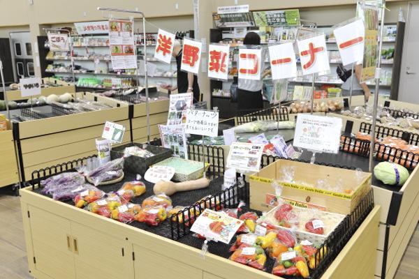 重点道の駅の活動の一環として、産直野菜の販売スペースには「西洋野菜コーナー」も設けられています。