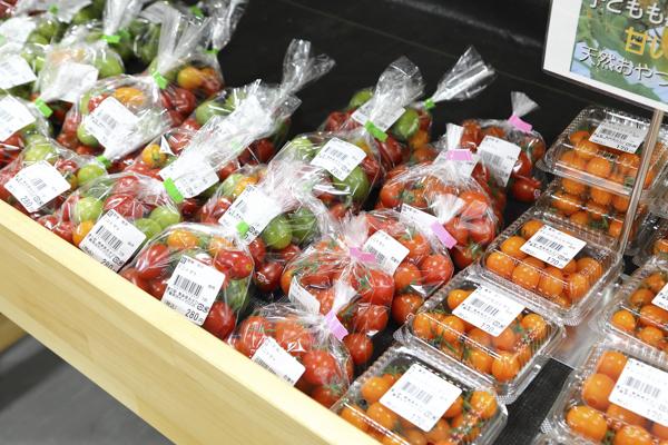 旭市名産のトマトは、産出額が国内でもトップクラス。