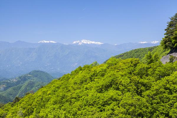 東には霊峰・富士、北西には雄大な南アルプスの山々を望む、県南の地域。