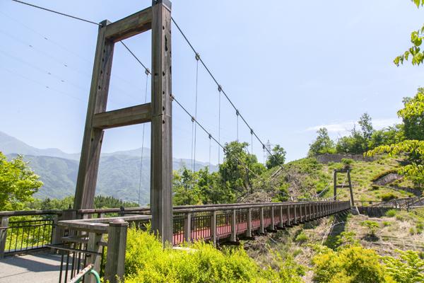「森の吊り橋」の先は「サバイバルの森」へ。さらに広大な大自然と触れあえる「自然観察の森」も。