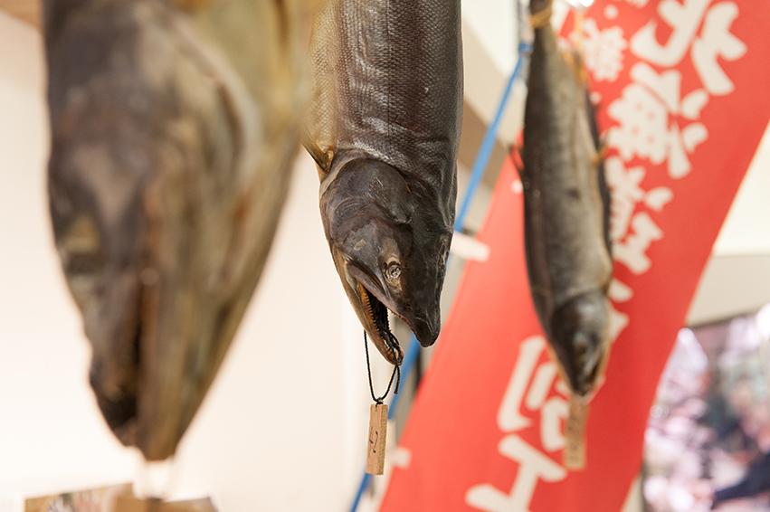 干鮭が吊されています。鋭い目つきに尖った口にびっくり!